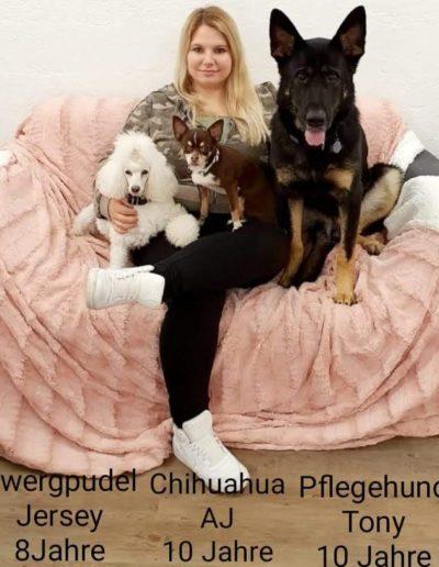 Hundesalon New Jersey - Joy Stadtmann